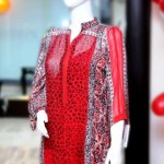 Elegance Valentines Day Women Dresses by Shirin Hassan