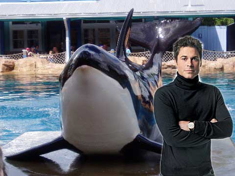 rob lowe and orca