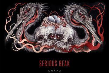 seriousbeak