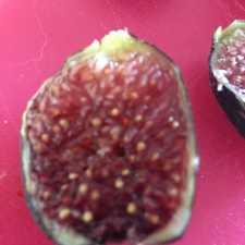 Fruchtfleisch der Ronde de Bordeaux Feige.