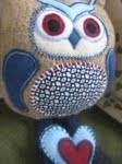 close up Logan owl