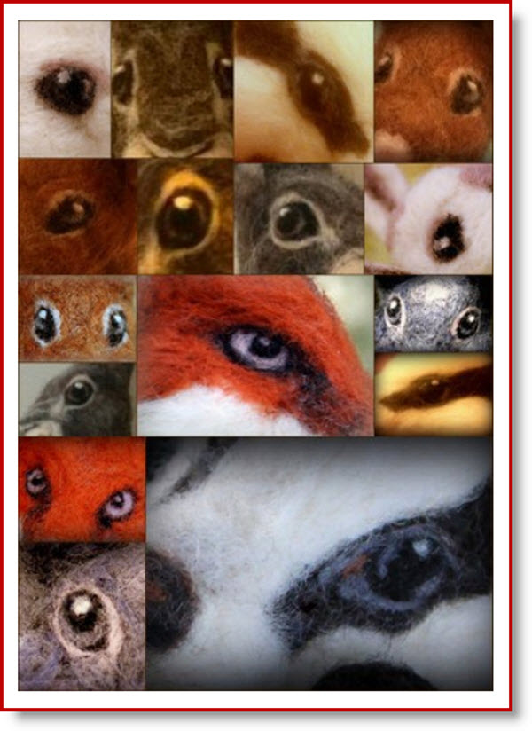felted eyes