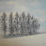 La nevada II