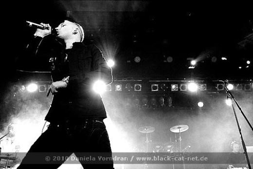NEUWERK-2010-0181