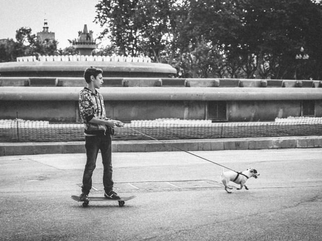 Bixpix-Le Skateboarder et son Chien-Photographie-30x40cm-2015