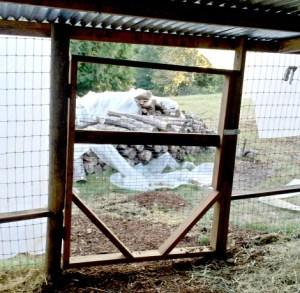 small-pasture-gate