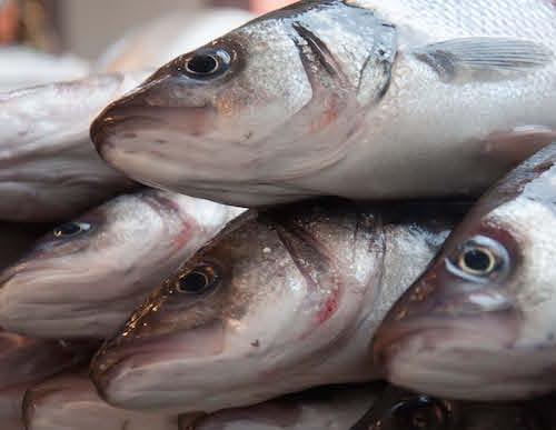 Market Fish