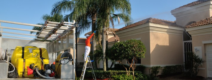 Pressure Washing Your Roof? Here's What You Need to Know