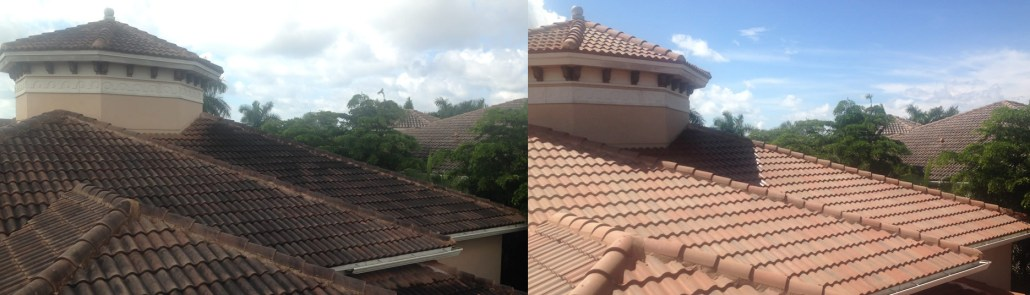 Do you need roof cleaning help in Parkland? Contact Us Now!