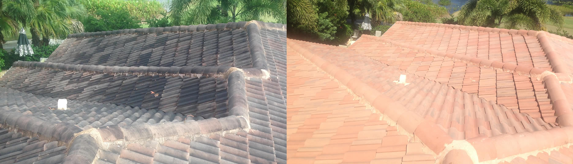 Coral Springs Roof Cleaning U2013 Be Smart And Choose Fiddler!
