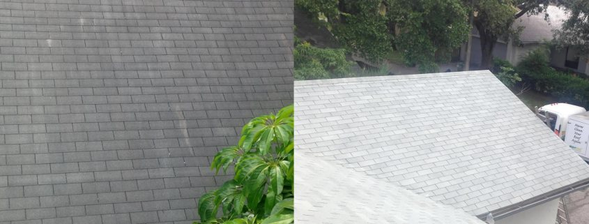 How to Keep Your Asphalt Shingles Clean! Follow These Tips