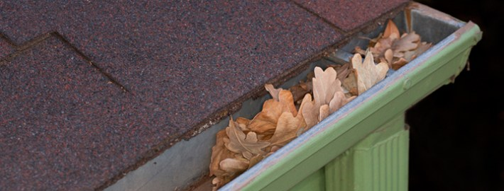 Cleaning and Maintaining Your Rain Gutters – Follow These Tips