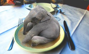 eat_the_elephant2