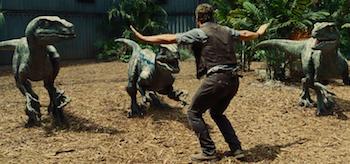Chris Pratt Velociraptors Jurassic World