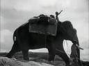 Elephant Boy Still2