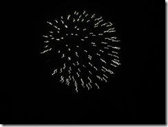 single firework by One Tree Hill Studios