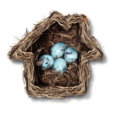 Home insurance concept and family security symbol as a bird nest shaped as a house with a group of fragile eggs inside as a metaphor for protection of residence or parenting.