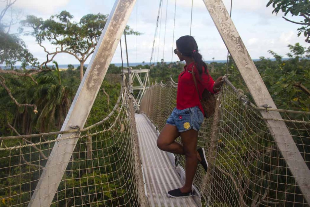the longest canopy walk in africa