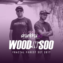 Wood n Soo - Sham mix 2017 - artwork