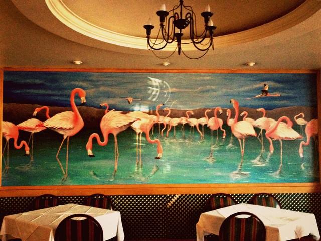 Troyeville Flamingos