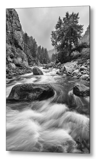 Colorado Black And White Canyon Portrait Metal Print