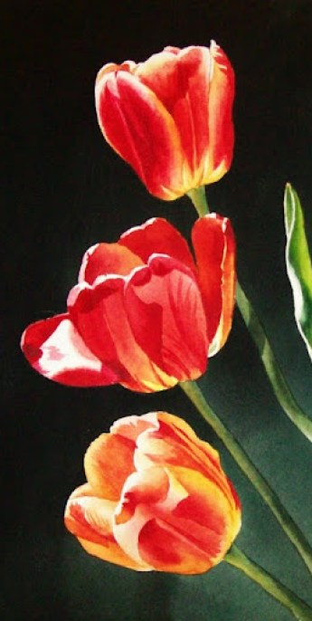 tulip-paintings