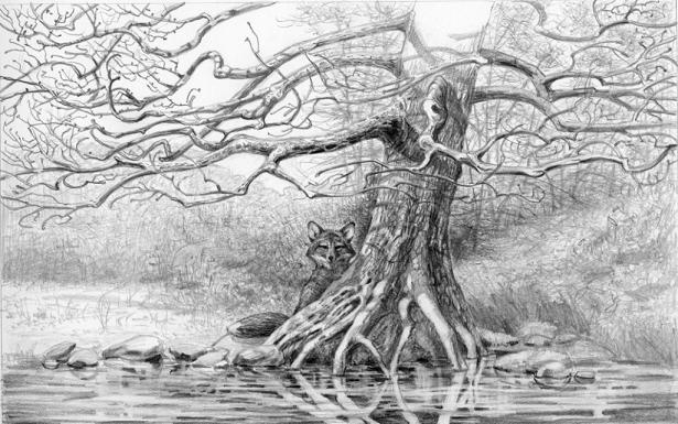 detailed-tree-drawing