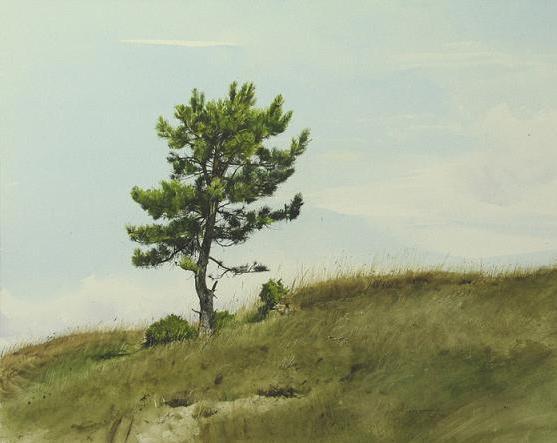 pine-tree-paintings