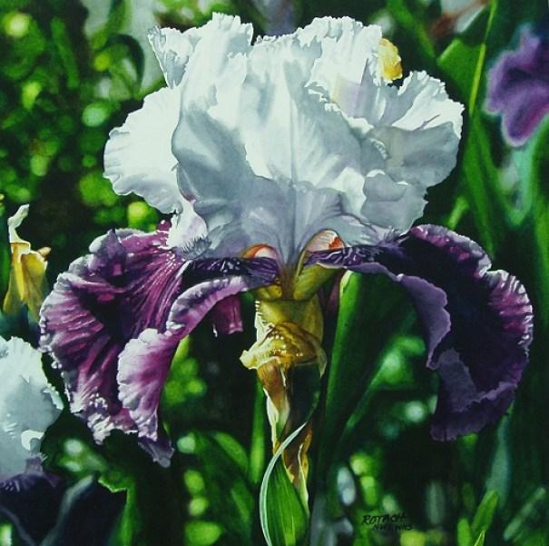 iris-flower-painting