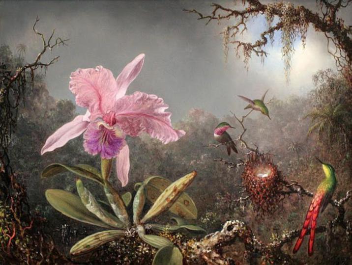 Martin-Johnson-Heade-paintings