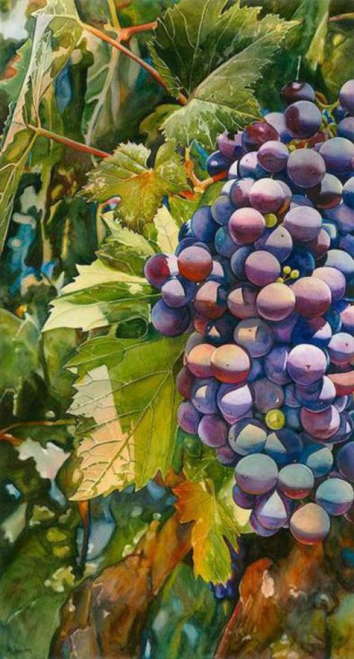 Watercolor-grape-paintings