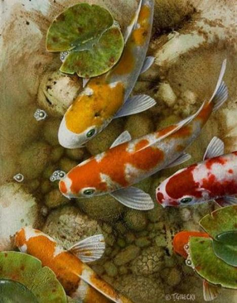 Amazing watercolor fish paintings fine art blogger for Japanese koi carp paintings