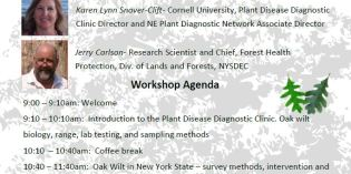 Oak Wilt: Detecting and Controlling a Lethal Disease, March 22, FLCC