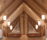 organ-pipes