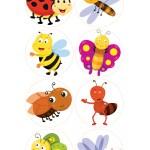 חרקים