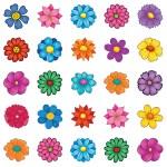פרחים6 קטן