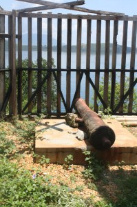 A cannon at the Fort.