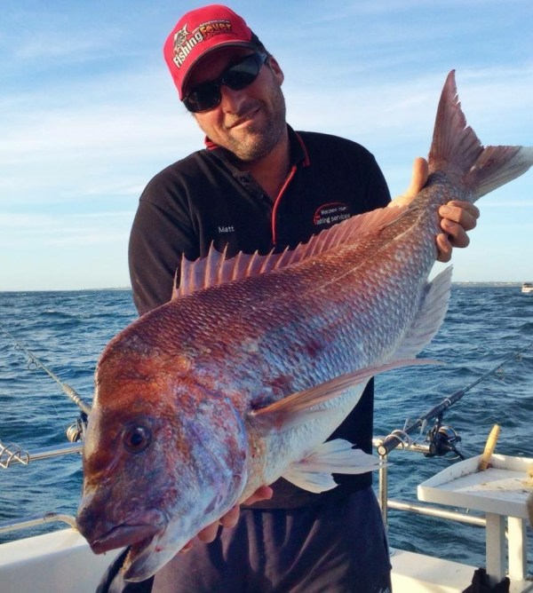 skipper matthew hunt with a very large snapper