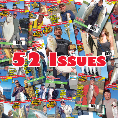 2 Years / 52 Issues
