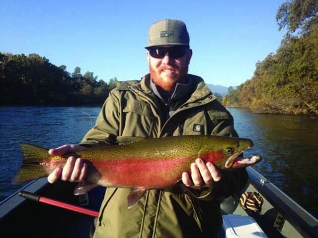 Wild Rainbows Take Center Stage In Wake Of Salmon Season