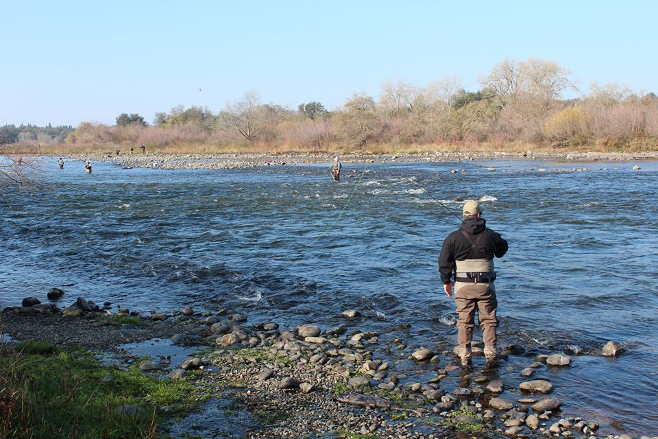 American River Water Releases Will Be Reduced to 2,000 Cfs
