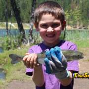 kid with trout_web