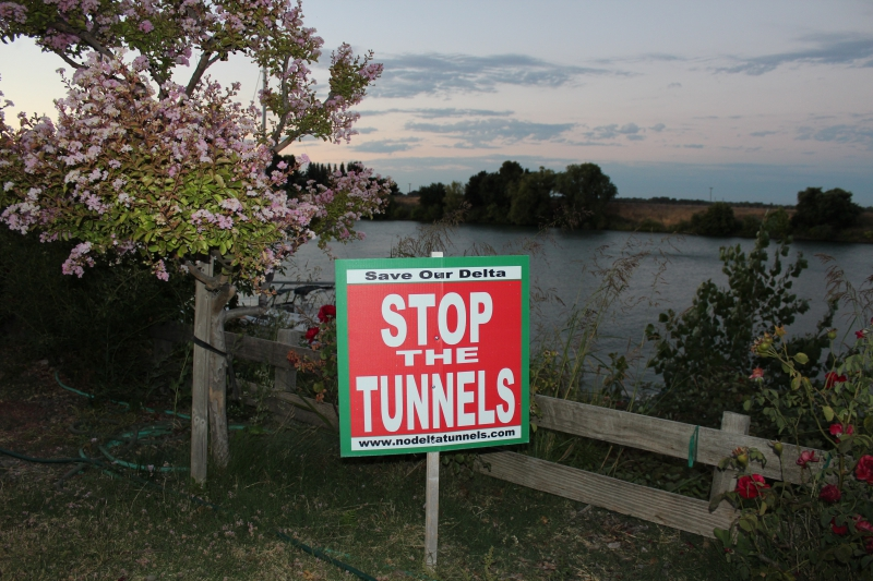 Delta Group Challenges Brown Administration Case For Twin Tunnels
