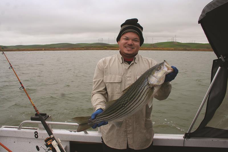 RJ Sanchez displays an 8 lb. striper that gobbled down chicken liver during a fishing trip on the Sacramento River.