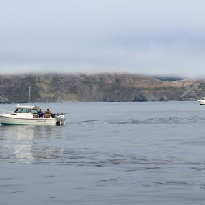 Photo of a flat calm day off the Sonoma County Coast by Dan Bacher.
