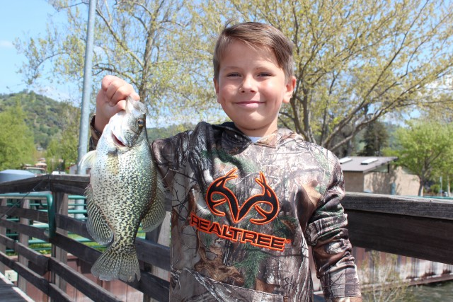Big black crappie like this are the reward for anglers fishing docks and other structure on Clear Lake.