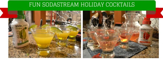 www sodastream com instructions