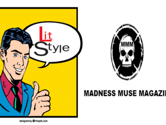 litstylemadnessmusemagazine
