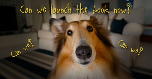Delay the Gratification of Launching Your Book