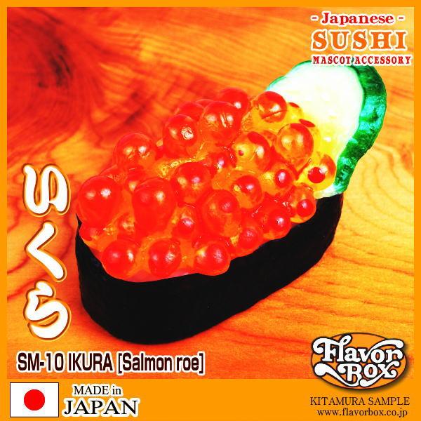 SM10-IKURA